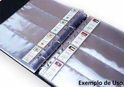 Etiquetas Cédulas do Mundo - 193 Países - Medidas das etiquetas 72mm x 31mm - Ideal para Folhas de Acetato com Espaços para Etiquetas